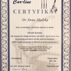 Anna Skulska certyfikat ukryte kanaly